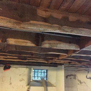 Traitement des bois contre les vrillettes et les capricornes à Bayonne au Pays Basque