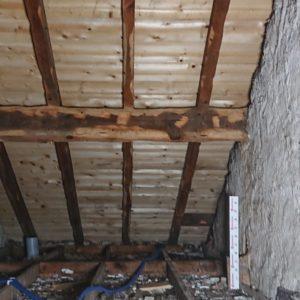Traitement des bois contre les vrillettes et les capricornes à Bayonne