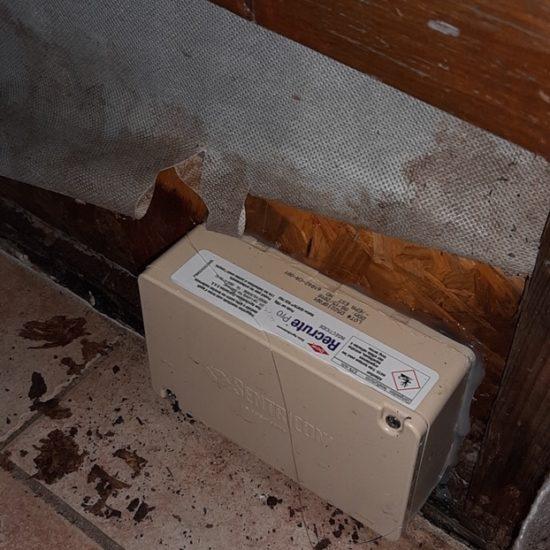 Traitement anti-termites par pièges à Moliets dans les Landes