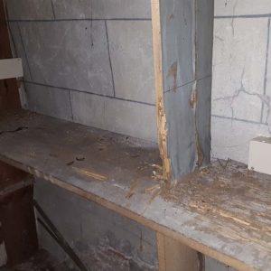 Traitement anti-termites par pièges à Saint Jean Pied de Port