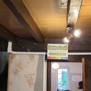 Traitement des bois solivage contre les vrillettes et les capricornes à Arnéguy au Pays Basque