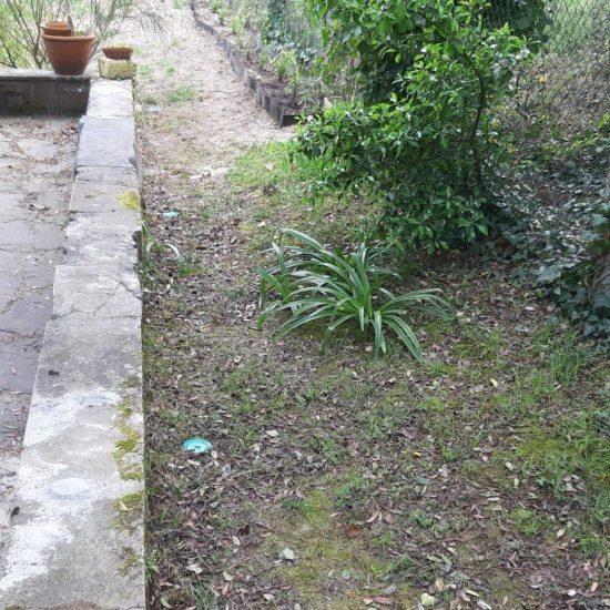 Traitement des termites à Anglet par pose de pièges anti-termites detec-bois