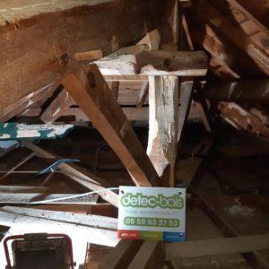 detec-bois, entreprise de traitement des bois contre les vrillettes et les capricornes au pays basque