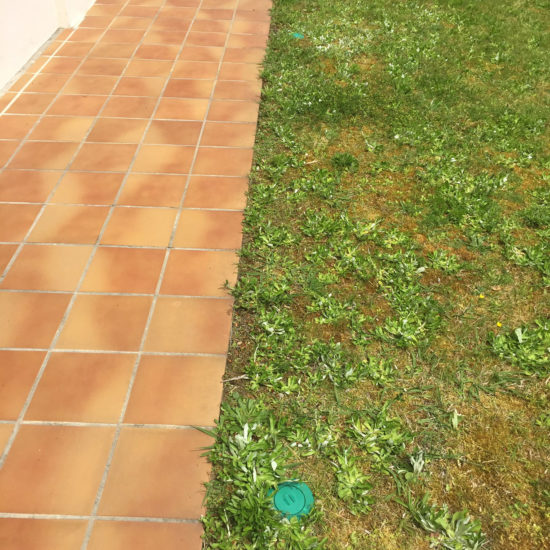 Traitement anti-termites par pièges à Soustons