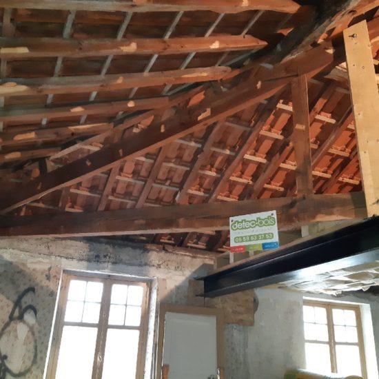 Traitement de charpente contre les vrillettes et les capricornes au Pays Basque à Ciboure