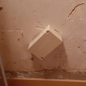 Traitement des termites par installation de pièges anti-termites à Ciboure au Pays basque