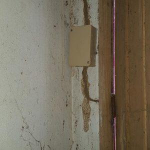 detecbois société de traitement contre les termites dans les landes intervient à hossegor