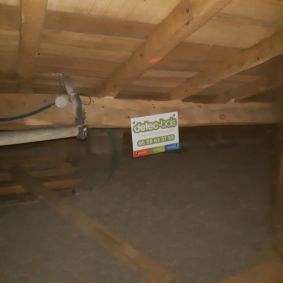 detec-bois société de traitement des bois de charpente au pays basque a saint pierre d'irube pour lutter contre les insectes xylophages du bois capricornes et vrillettes