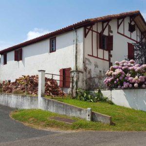 detec bois société de traitement des termites intervient à Mendionde au Pays basque