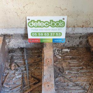 detec bois traitement de charpente contre les vrillettes et les capricornes à biarriz au pays basque