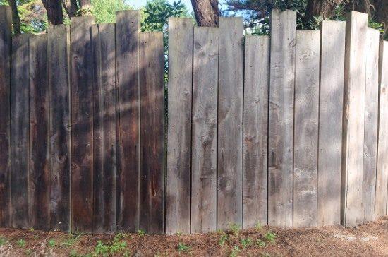 detec-bois traitement des bois contre les vrillettes et les capricornes a anglet au pays basque