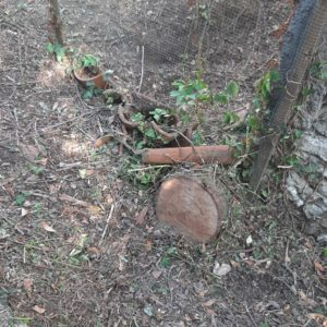 detec bois réalise le traitement des termites a labatut dans les landes