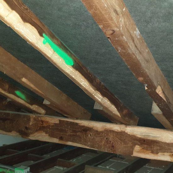 detec-bois traite les bois de charpente contre les vrillettes et les capricornes à bayonne au pays basque