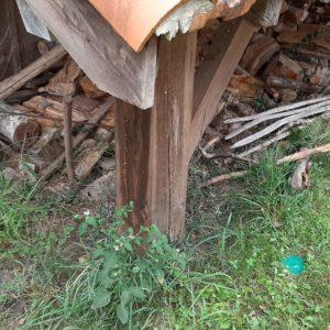 detec-bois traite les termites à Lit et Mixe