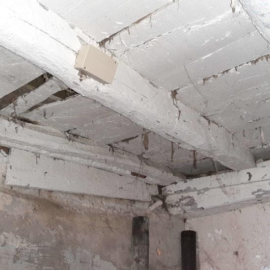 detec-bois réalise le traitement des termites par pièges dans les Landes