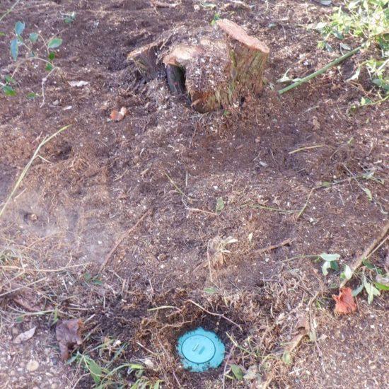 detec-bois luute contre les termites à Tarnos dans les Landes