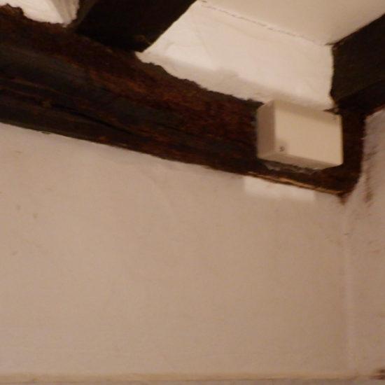 detec-bois traitement anti termites à Bonloc au Pays basque