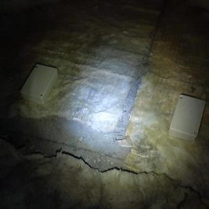 detec-bois traitement des termites à Pujo le Plan dans les Landes