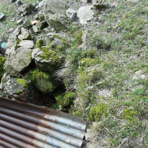 detec-bois traitement contre les termites au pays basque a st etienne de baïgorry
