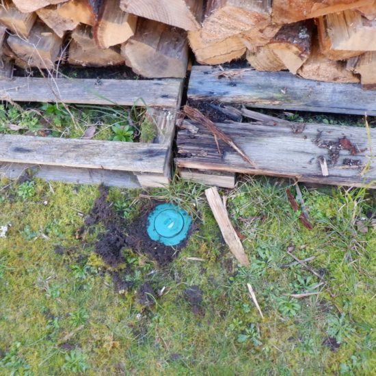 detec-bois traitement des termites à Seignosse dans les Landes