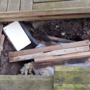 detec-bois lutte contre les termites à soustons dans les landes
