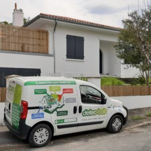 detec-bois traitement termite Biarritz au Pays Basque