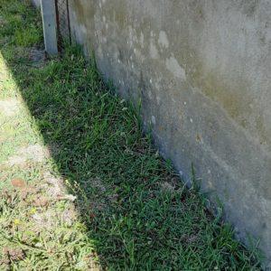 Protection contre les termites a Poyartin dans les Landes