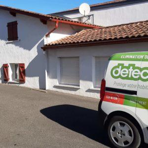 Protection termites Mouguerre Pays Basque
