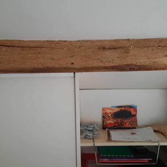 detec bois traitement anglet vrillettes capricornes