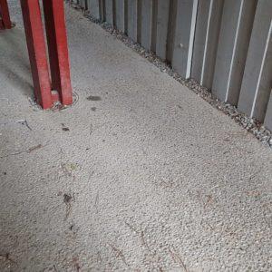 Traitement termites à Moliets dans les Landes
