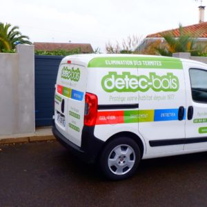 detec bois protection termites pays basque