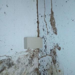 detec bois traitement des termites à Tarnos