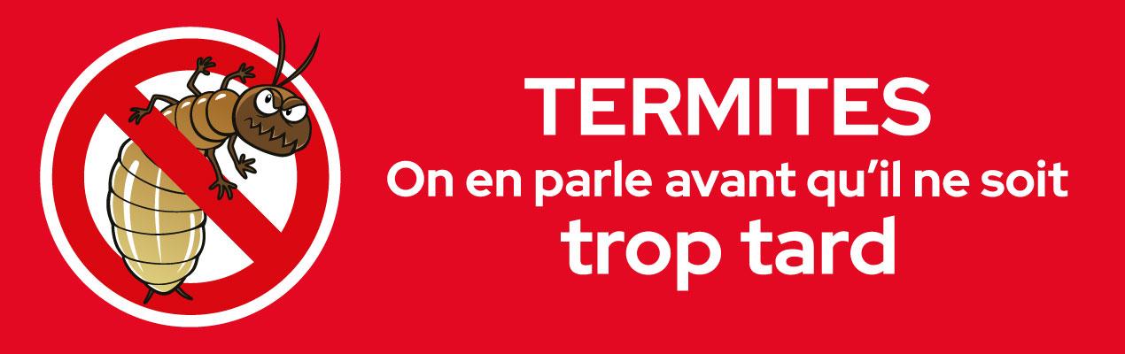 Bannière c'est la saison des termites